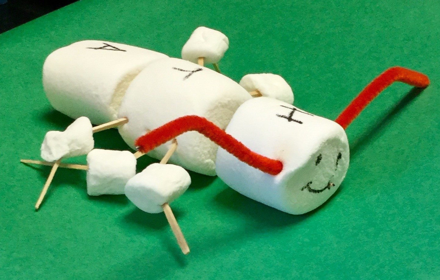 Insect-themed art projects, including 3-foot-long model of an arthropod.