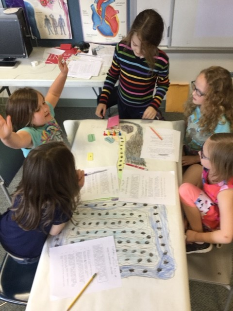 Second graders play digestion-themed board game.