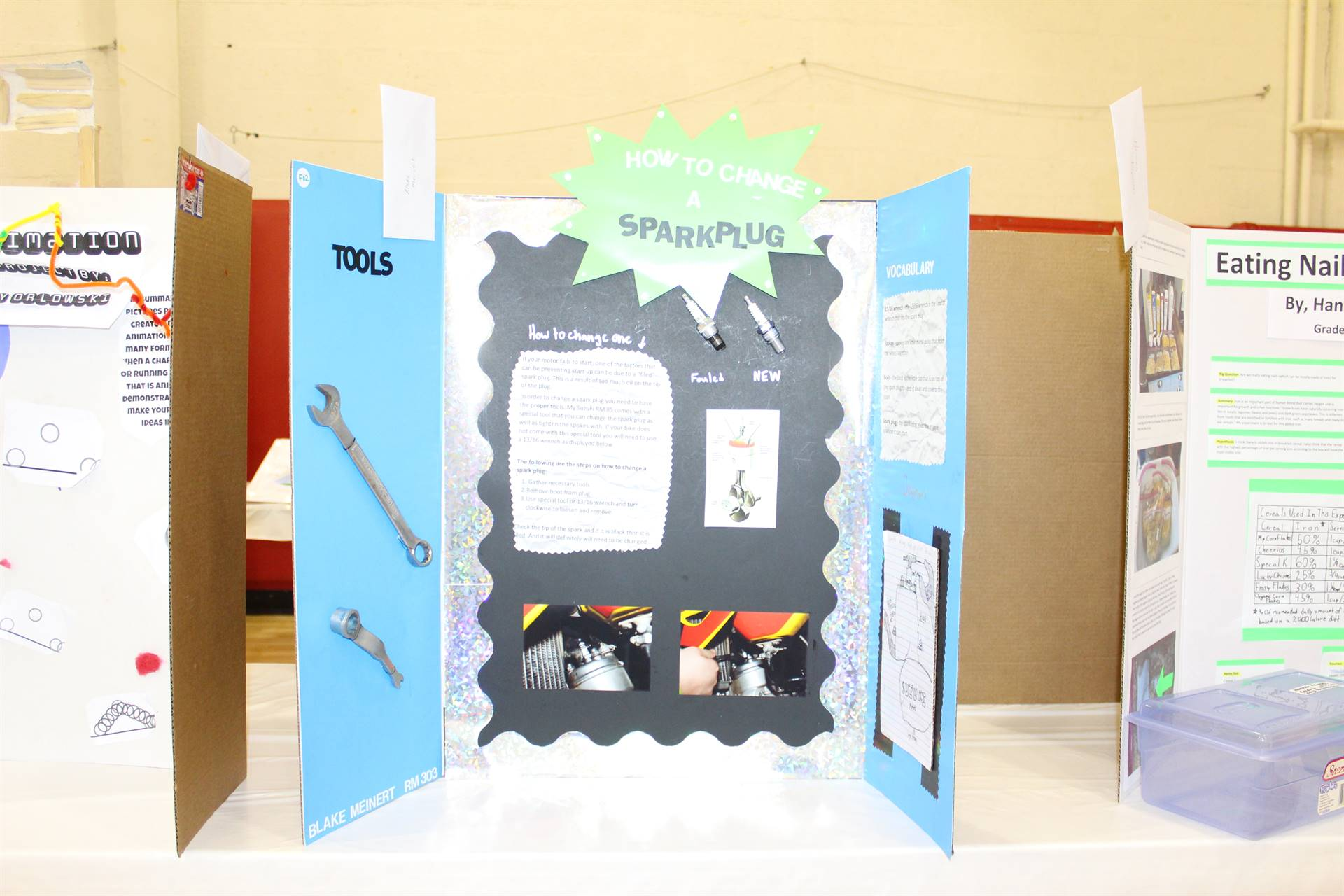 Science Fair Entry