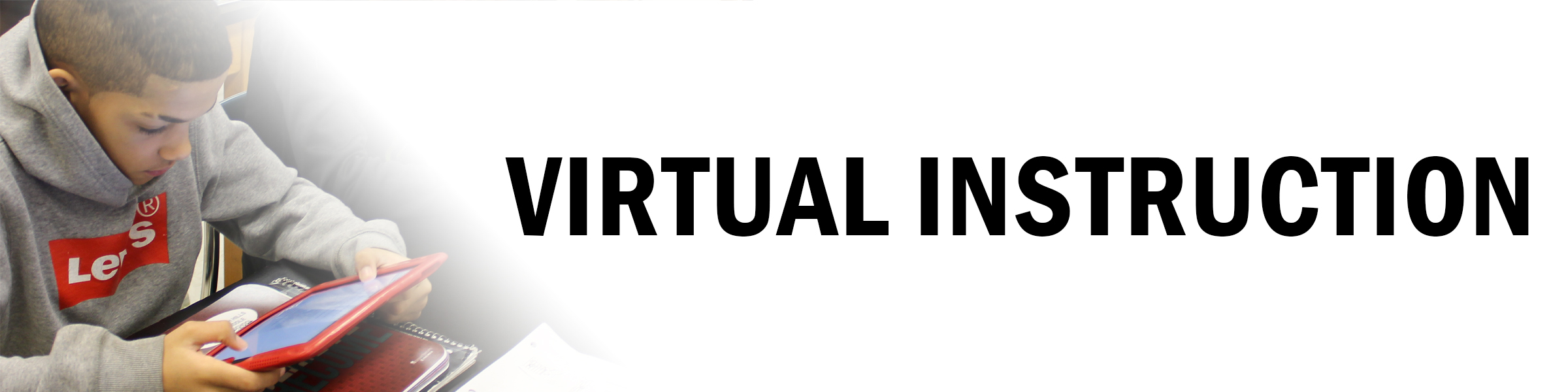Virtual Instruction