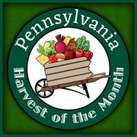 PA Preferred Product Logo